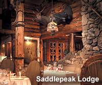 saddlepeak_lodge.jpg