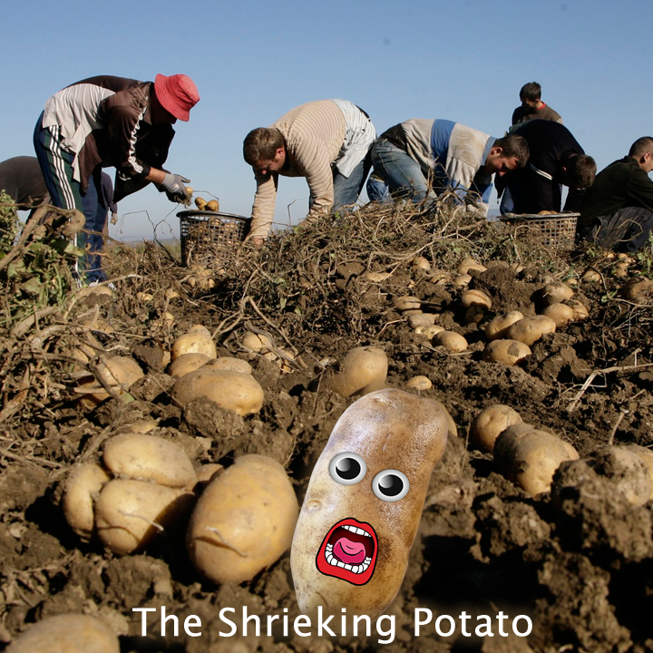 The Shrieking Potato