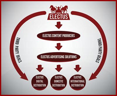 Electus_chart.jpg
